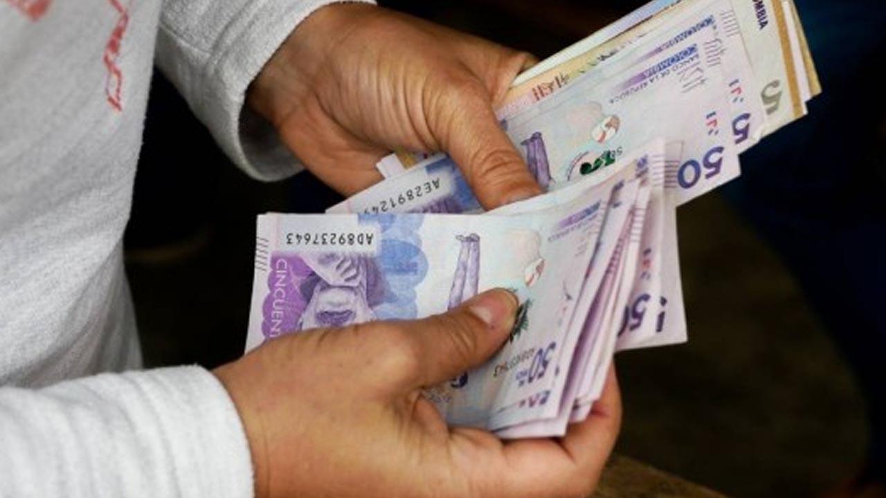 Programa De Apoyo Para El Pago De La Prima De Servicios (PAP)